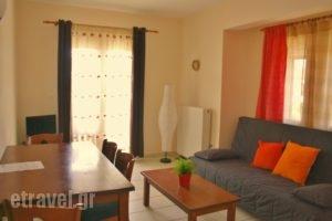 Summer_travel_packages_in_Macedonia_Halkidiki_Chalkidiki Area