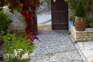Ameliko_best prices_in_Hotel_Epirus_Ioannina_Zitsa