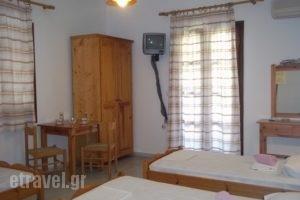 Studios Katerina_holidays_in_Hotel_Cyclades Islands_Naxos_Naxos Chora