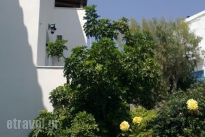 Studios Katerina_lowest prices_in_Hotel_Cyclades Islands_Naxos_Naxos Chora