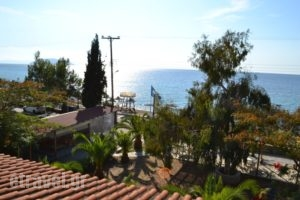 Regos_accommodation_in_Apartment_Macedonia_Halkidiki_Paradisos