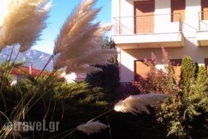 Karipidis Hotel_travel_packages_in_Macedonia_Florina_Aetos