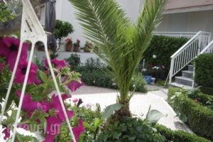 Angela_best prices_in_Apartment_Macedonia_Thessaloniki_Asprovalta
