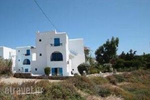 Sunny Beach Studios_best deals_Hotel_Cyclades Islands_Naxos_Naxos chora