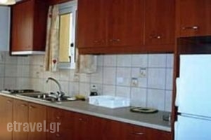Tzanetos Studios_lowest prices_in_Room_Ionian Islands_Zakinthos_Laganas