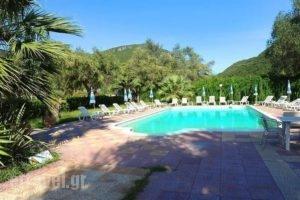 Phivos Studios_lowest prices_in_Apartment_Ionian Islands_Corfu_Palaeokastritsa