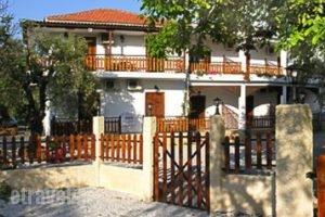 Vergonis Studios_accommodation_in_Room_Thessaly_Magnesia_Koropi