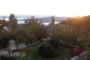 Klio Guesthouse_best prices_in_Hotel_Thessaly_Magnesia_Neochori