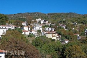 Klio Guesthouse_lowest prices_in_Hotel_Thessaly_Magnesia_Neochori