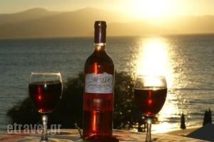 Step By Step Studios_holidays_in_Hotel_Cyclades Islands_Naxos_Naxos chora