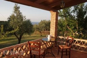 Lithies Farm Houses_travel_packages_in_Ionian Islands_Zakinthos_Zakinthos Chora
