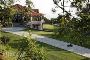 Ktima Faki_lowest prices_in_Hotel_Macedonia_Pieria_Litochoro