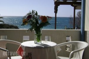 Magic View Ii Agia Anna_best deals_Hotel_Cyclades Islands_Naxos_Naxos chora