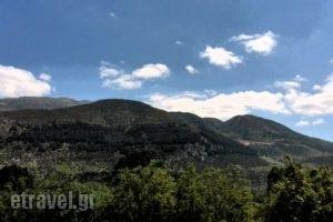 Lakkas_travel_packages_in_Epirus_Ioannina_Ioannina City