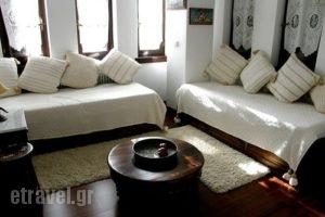 Petrino_accommodation_in_Hotel_Thessaly_Magnesia_Portaria