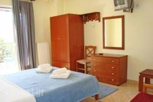 Xenonas Paradosi_holidays_in_Apartment_Epirus_Thesprotia_Igoumenitsa
