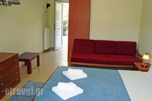 Xenonas Paradosi_best prices_in_Apartment_Epirus_Thesprotia_Igoumenitsa