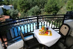 Sirines_best prices_in_Apartment_Aegean Islands_Thasos_Potos