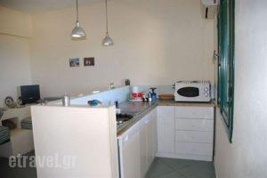 Rigo Apartments_accommodation_in_Apartment_Dodekanessos Islands_Karpathos_Karpathosst Areas