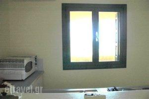 Rigo Apartments_best prices_in_Apartment_Dodekanessos Islands_Karpathos_Karpathosst Areas