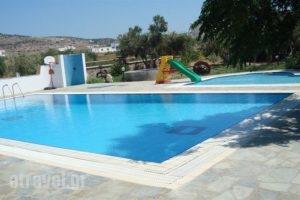 Manolis Studios_accommodation_in_Apartment_Cyclades Islands_Naxos_Mikri Vigla