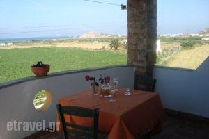 Manolis Studios_lowest prices_in_Apartment_Cyclades Islands_Naxos_Mikri Vigla