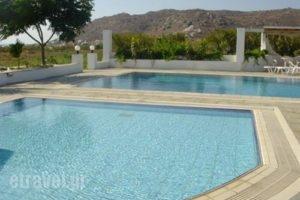 Manolis Studios_travel_packages_in_Cyclades Islands_Naxos_Mikri Vigla