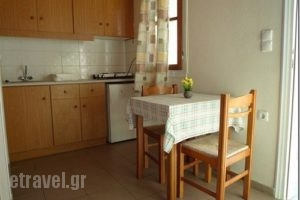 Hatzis Apartments_holidays_in_Apartment_Crete_Heraklion_Hani Kokkini