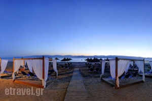Island Beach Resort_lowest prices_in_Hotel_Ionian Islands_Corfu_Kavos