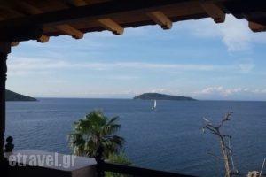 Chrysoula's Guest House_lowest prices_in_Hotel_Sporades Islands_Skiathos_Skiathos Chora