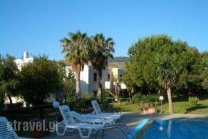 Apartments Seagull_lowest prices_in_Apartment_Dodekanessos Islands_Kos_Kos Chora