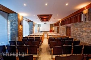 Santa Marina Arachova_lowest prices_in_Hotel_Central Greece_Viotia_Arachova