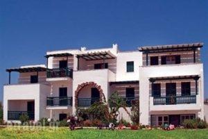 Elpida Studios_accommodation_in_Hotel_Cyclades Islands_Naxos_Agia Anna
