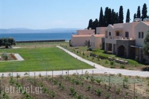 Enalia Gi_holidays_in_Apartment_Central Greece_Evia_Limni