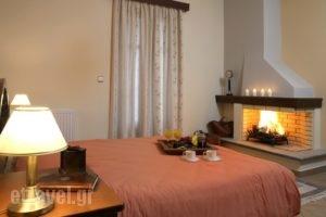 Ef Studios & Suites_best prices_in_Apartment_Central Greece_Viotia_Arachova
