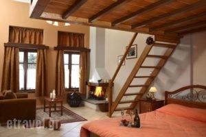 Ef Studios & Suites_holidays_in_Apartment_Central Greece_Viotia_Arachova