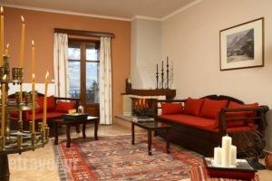 Ef Studios & Suites_best deals_Apartment_Central Greece_Viotia_Arachova