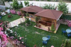 Korali House_best deals_Hotel_Epirus_Preveza_Preveza City