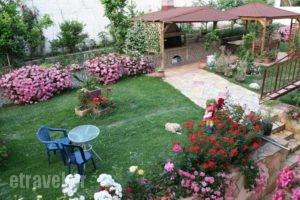 Korali House_best prices_in_Hotel_Epirus_Preveza_Preveza City