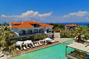 Flegra Palace_travel_packages_in_Macedonia_Halkidiki_Haniotis - Chaniotis