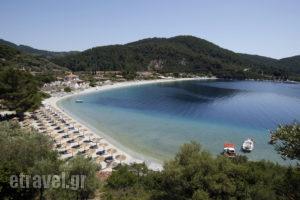 Skopelos Holidays Hotel & Spa_accommodation_in_Hotel_Sporades Islands_Skopelos_Skopelos Chora