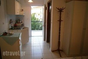 Alexandros_holidays_in_Apartment_Epirus_Preveza_Kanali