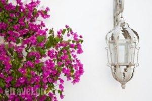 Smaragdi Hotel_best deals_Apartment_Cyclades Islands_Sifnos_Artemonas