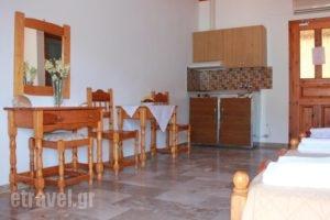 Liotrivi Studios_best deals_Hotel_Ionian Islands_Lefkada_Lefkada's t Areas