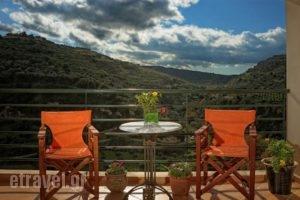Estate Kares_accommodation_in_Hotel_Crete_Rethymnon_Plakias