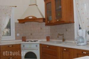 Gerani Villas_best prices_in_Villa_Crete_Rethymnon_Rethymnon City