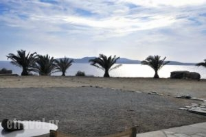 Fos Suites_holidays_in_Hotel_Cyclades Islands_Mykonos_Mykonos ora