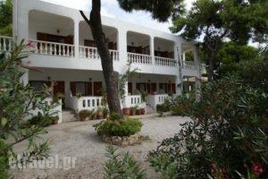 Maria Studios_best deals_Hotel_Sporades Islands_Alonnisos_Patitiri