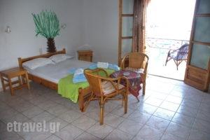 Azalea Studios_best deals_Apartment_Sporades Islands_Skiathos_Skiathos Chora