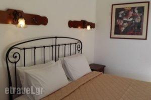 Chrysoula's Guest House_holidays_in_Hotel_Sporades Islands_Skiathos_Skiathos Chora